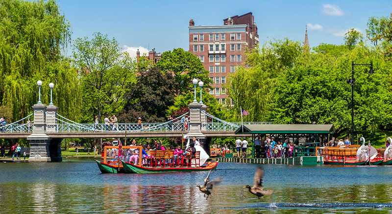 Boston Enjoy the Beauty of Boston Public Garden